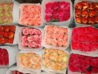 Живые цветы оптом и в розницу