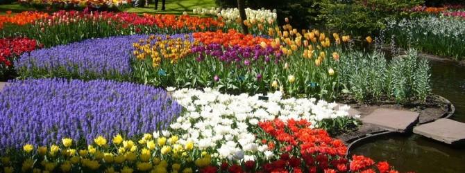 Приглашение на семинар от союза садоводов России