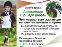 Приглашаем всех желающих на занятия конным спортом.